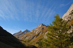 Nature Sauvage, Mountains, Travel, Wild Flowers, Wild Animals, Pathways, Wild Life, Mont Blanc, Tours