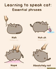 Learn to speak cat / pusheen :: cat :: language :: comics (funny comics & strips, cartoons) :: gif / funny pictures & best jokes: comics, images, video, humor, gif animation - i lol'd
