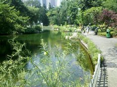 Hong Kong Park, a sunny warm day