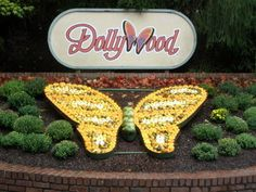Dollywood.  Pigeon Forge, Tennessee.  The Hubby and I especially loved the Eagle Mountain Sanctuary.....and Dolly's story at Chasing Rainbows was very good too.  We loved the entire park!