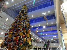 Christmas Joy in Medellin (+video)
