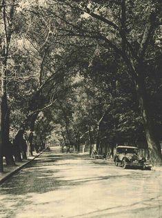 Un cartier pustiu. Cotroceniul in anii Cartier, Romania, Vintage Men, Street View, Retro, Outdoor, Coca Cola, Military, Black N White