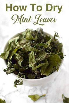 Drying mint tea is a perfect way to store it until and through the winter. When your ready place the leaves in a cup or in a tea ball and add hot water. Dairy Free Recipes Easy, Healthy Recipes, Drying Mint Leaves, Kosher Recipes, Peppermint Tea, Dry Leaf, Drying Herbs, Food And Drink, Yummy Food
