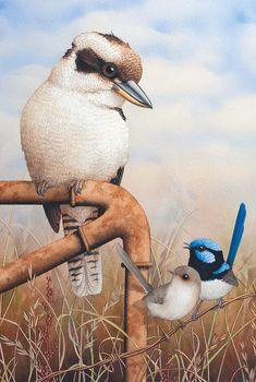Australian Kookaburra And Superb Blue Wrens – Art Publishing Australia Australian Native Flowers, Australian Animals, Silhouette Painting, Bird Silhouette, Australian Painting, Australian Artists, Owl Art, Bird Art, Bird Theme Nursery