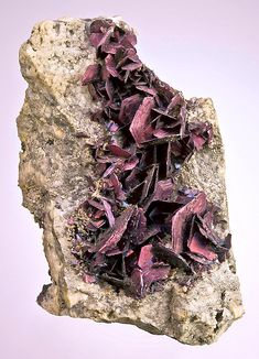 Covellite- a rare copper sulfide mineral with the formula CuS. on matrix,From the Reynolds Tunnel, Summitville Mine, Summitville District, Rio Grande Co., Colorado.  Measures 7.2 cm by 4.1 cm by 3 cm in total size.