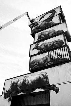 Shipping Containers Painted as Cages in Powerful Series by ROA - My Modern Met