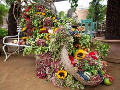 Shane Connolly and & Company | London's event Florist|Events| Shane Connolly Flowers & Company