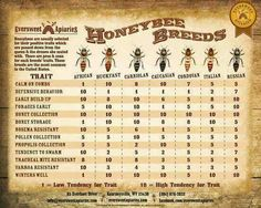 Bee breeds via Eversweet Apiaries