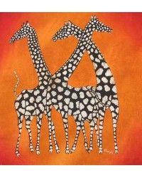 Giraffes / Zebras