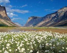 Quttinirpaaq, National Park in Nunavut, Canada