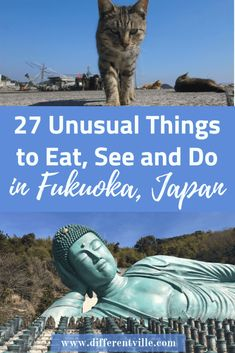 If you're planning a trip to Fukuoka and are looking for something different to do, then we can help. From the amazing Buddha to an island full of cats (or one full of flowers) we've found the most fun and unusual things to do in Fukuoka. We also know the best things to eat in Fukuoka. Click to read it now or save it to your Japan or Fukuoka boards for later. #fukuoka #Japan #thingstodoinfukuoka