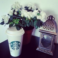 Coffee and white flowers