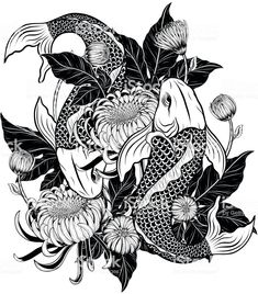 Illustration of Koi fish and chrysanthemum tattoo by hand drawing.Tattoo art highly detailed in line art style. vector art, clipart and stock vectors. Koi Fish Drawing, Koi Fish Tattoo, Fish Drawings, Medusa Drawing, Japanese Tattoo Designs, Japanese Tattoo Art, Japanese Art, Pisces Tattoo Designs, Pisces Tattoos