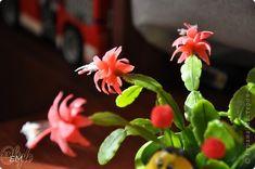 Цветок Декабрист из холодного фарфора. - Холодный фарфор - Лепка - Каталог статей - Рукодел.TV