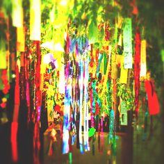 七夕飾り Tanabata decoration SUMMER JAPAN