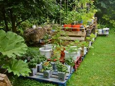 Look in the picture that the greenery give the cooling to eyes and looks an amazing view in the picture and the management of the plants are so cute which are place placed on the wooden pallet planks.