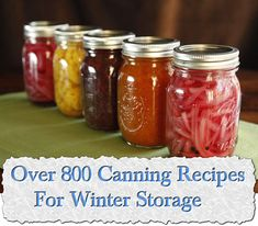 *****GREAT SITE****Over 800 Canning Recipes For Winter Storage
