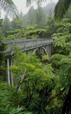 Bridge to Nowhere, Whanganui NP, Manawatu-Wanganui, NZ