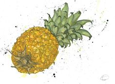 Original illustrations and giclee prints by famous illustrator Emma Dibben. Natural Forms Gcse, Natural Form Art, Natural Structures, A Level Art Final Piece, Pineapple Illustration, Contrast Art, A Level Textiles, Lemon Art, Mechanical Art