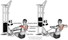 Cable rear delt row. Targets your Posterior Deltoid. Your Lateral Deltoid, Middle and Lower Trapezii, Rhomboids, Infraspinatus, Teres Minor, Brachialis, and Brachioradialis work as synergists. Also known as a rear deltoid cable row.