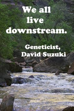 """We all live downstream.""  Award-winning geneticist, David Suzuki. -- More nature quotations at http://www.examiner.com/article/twelve-essential-nature-quotations -- image is Zion River in Zion National Park;   #quotations, #nature"
