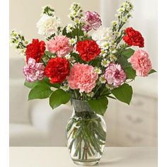 Carnations flowers for Birthday Day. Send these lovely one dozen of colorful Carnations with vase to your friend. Elegant Flowers, Tiny Flowers, Amazing Flowers, Fresh Flowers, Wedding Arrangements, Floral Arrangements, Wedding Centerpieces, Online Flower Shop, Flowers Online