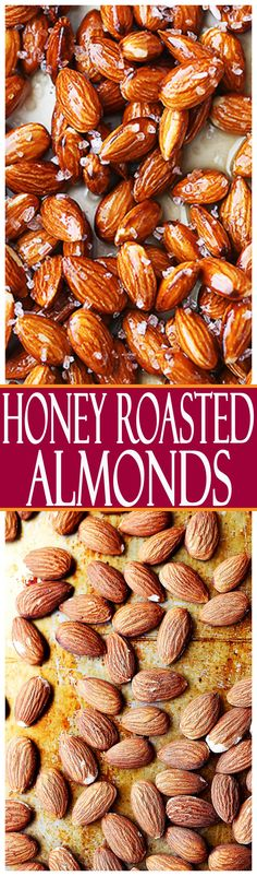 Honey Roasted Almonds - Simple, festive, healthy, and delicious almonds covered in honey and a sprinkle of salt! Perfect for snacking, or even gifting!