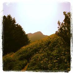 Es ist einfach herrlich in den Bergen. Aktuell auf 2000 müM messen wir angenehme 23 Grad Celsius.