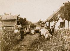 Tanya az 1930-as években