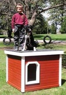 Mattie - Minnesota:  several years of being tried and tested, this dog house has been proven to be the most comfortable and the safest home you can build for your beloved dog.