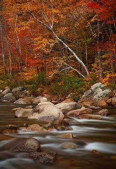 Swift River, Kancamagus Highway, White Mountains, New Hampshire