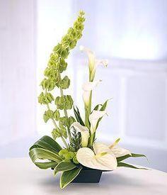 JP: Ikebana - Bells of Ireland Calla Lilies Anthuriums Button Mums. Hotel Flower Arrangements, Contemporary Flower Arrangements, Ikebana Flower Arrangement, Ikebana Arrangements, Beautiful Flower Arrangements, Beautiful Flowers, Modern Vases, Tropical Flower Arrangements, White Floral Arrangements