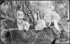 Citation: Three women in a tree, ca. 1895 / unidentified photographer. John Frederick Peto and Peto family papers, Archives of American Art, Smithsonian Institution.