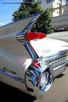 1950's white Cadillac Eldorado tail fin