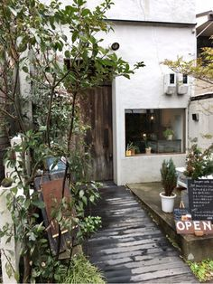 白川通沿いに面している、緑溢れるそうげんカフェ。 実はカフェだけではなく、お花屋、アンティーク家具屋も兼ねているのです。