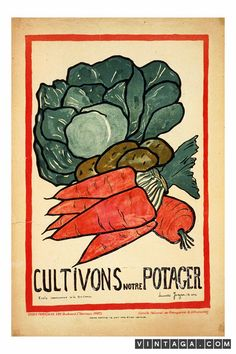 Cultivons Notre Potager