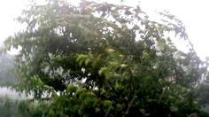 Ураганный ветер, с дождем и градом, в городе Ефремов!