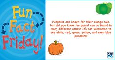 A pumpkin can be blue. True or False? As you transition your classroom, keep this fun fact in mind while decorating for fall and Thanksgiving.