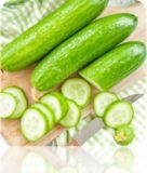 Cucumber - Ashley | SeedsNow.com