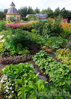 Aspegrenin Puutarha Pietarsaaressa on varmasti jokaisen keittiötarhurin unelma! Birds And The Bees, Potpourri, Finland, Earthy, Lush, Bloom, Herbs, Vegetables, Spring
