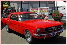 1964 1/2 Mustang.  I will own one again!!!