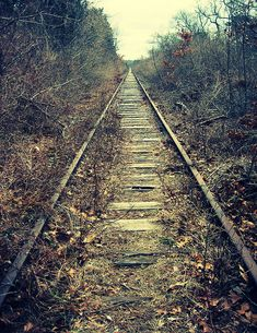 take a walk into nowhere by nikolinelr, via Flickr
