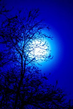 "mistymorningme: ""Moon Mist by mistymorningme Im Blue, Kind Of Blue, Love Blue, Dark Blue, Blue Wallpapers, Pretty Wallpapers, Wallpaper Backgrounds, Blue Aesthetic Dark, Aesthetic Colors"