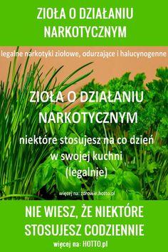 Herb Garden, Diabetes, Herbalism, Food And Drink, Herbs, Health, Goal, Herbal Medicine, Health Care