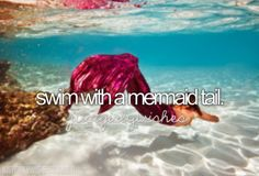 Bucket List. Or ya know. Be a mermaid that'd be cool too it's 2013; why don't we have the technology to make me a mermaid yet????