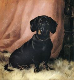 "Maud Earl, ""Black and Tan Daschund."" a canadian lady!"