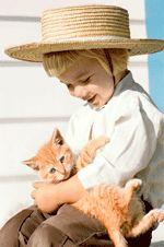 """Feline Friend""  http://amishphoto.com"