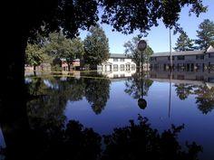 Greenville: North Carolina Hurricane Floyd & Irene (DR-1292)