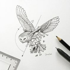Abstract Geometric Animal Illustrations By Kerby Rosanes