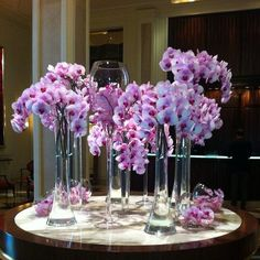 Overflowing with graceful pink orchids at  @Bevvvvverly Wilshire (A Four Seasons Hotel)